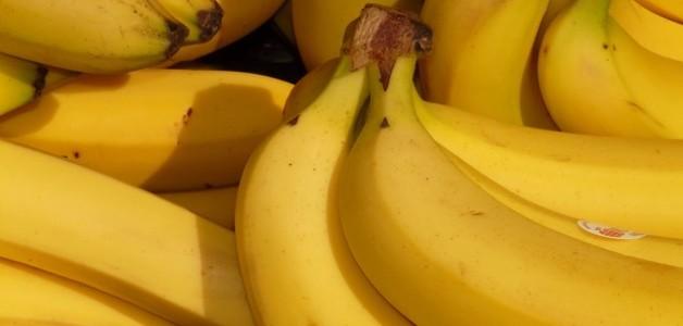 A banana corre risco de extinção - e o que podemos fazer para evitar isso
