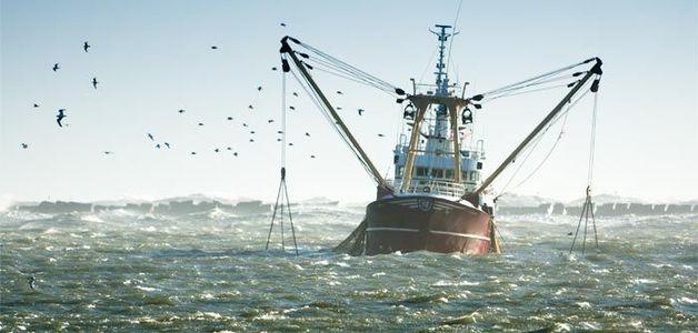 Acabou o peixe nos mares da Europa: abastecimento até o fim de 2018 será suprido com importações