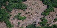 Cada km² desmatado na Amazônia equivale a 27 novos casos de malária