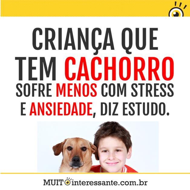 Criança que tem cachorro sofre menos com stress  e ansiedade, diz estudo.