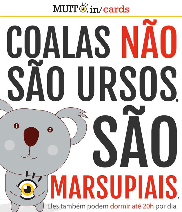 Coalas não são ursos. São marsupiais. E ainda podem dormir até 20 horas por dia.