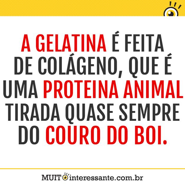 A gelatina é feita de colágeno, que é uma proteína animal tirada quase sempre do couro do boi.
